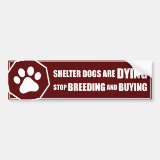 """Stop Breeding and Buying"" Bumper Sticker"