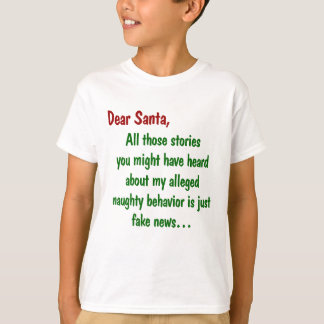 Stories of My Naughty Behaviour is Fake News T-Shirt