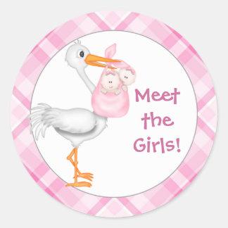 Stork & Twin Girls Baby Announcement Classic Round Sticker
