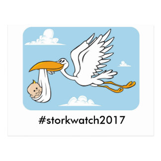 Stork watch postcard