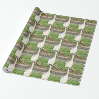 Stork Wrapping Paper