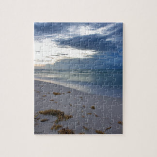 Storm Approaching Miami Beach Jigsaw Puzzle