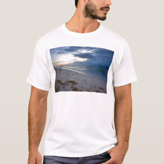 Storm Approaching Miami Beach T-Shirt