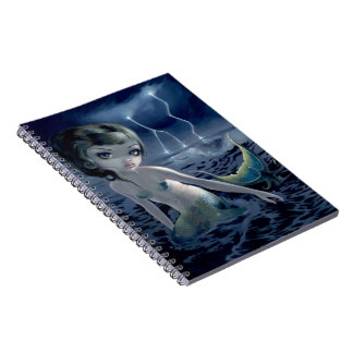 """""""Storm Chaser"""" Notebook"""