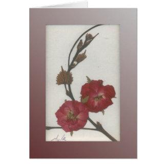 Storm Rose Card