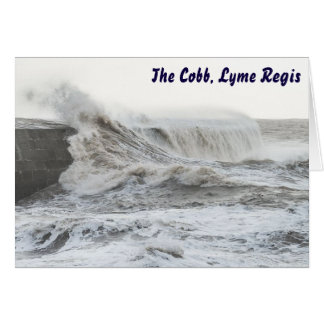 Stormy Cobb, Lyme Regis Greeting Card