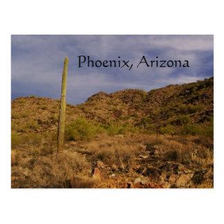 Stormy day in Phoenix Postcard