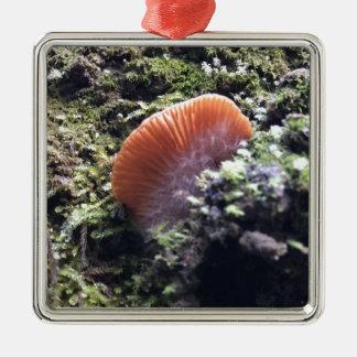 Stormy Mycelia Burst Mushroom Metal Ornament
