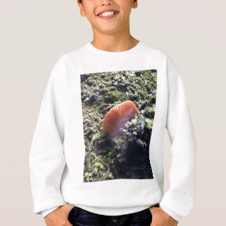 Stormy Mycelia Burst Mushroom Sweatshirt