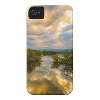 Stormy Night Ahead iPhone 4 Case