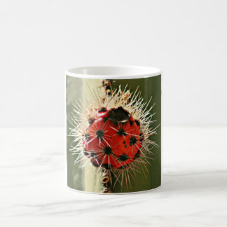 Stove Pipe Red Cactus Bloom Coffee Mug