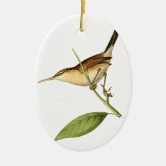 Straight-billed Wren Bird Illustration by William Ceramic Ornament