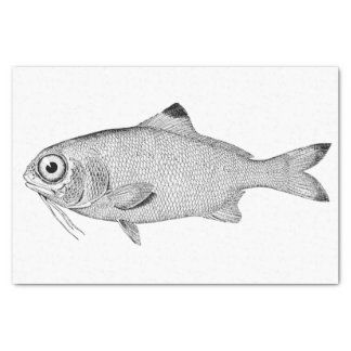 Strange vintage fish drawing tissue paper