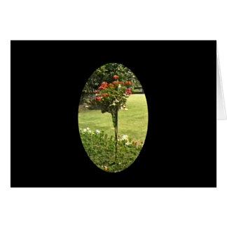 Stratford-upon-Avon England Garden Roses jGibney Card