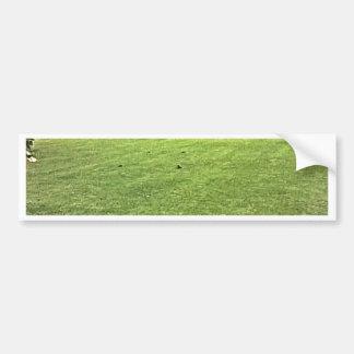 Stratford-upon-Avon England On-The-Green jGibney Bumper Sticker
