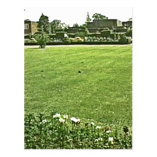 Stratford-upon-Avon England On-The-Green jGibney Postcard