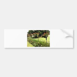 Stratford-upon-Avon Garden Rose snap-29602 jGibney Car Bumper Sticker
