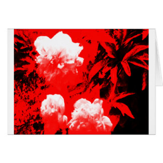 Stratford-upon-Avon White Flowers In The Red jGibn Greeting Card