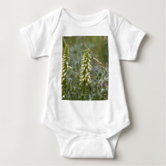 Straw foxglove (Digitalis lutea ssp australis) Baby Bodysuit