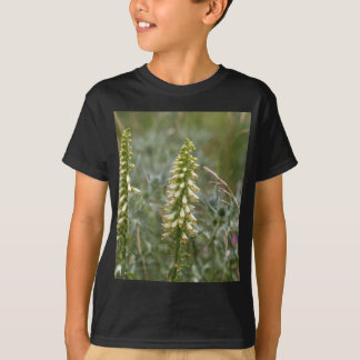 Straw foxglove (Digitalis lutea ssp australis) T-Shirt
