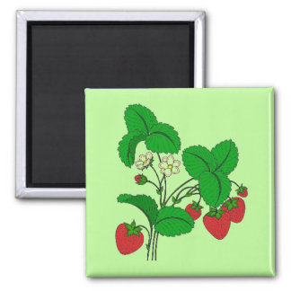 Strawberries for Breakfast Magnet