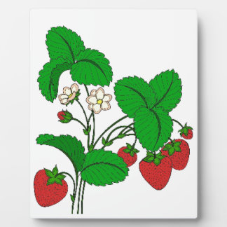Strawberries for Breakfast Plaque