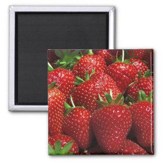 Strawberries fridge magnet