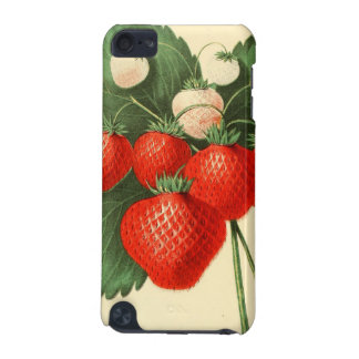 Strawberries iPod Touch (5th Generation) Case