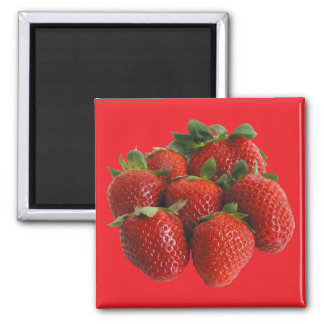 Strawberries Magnet