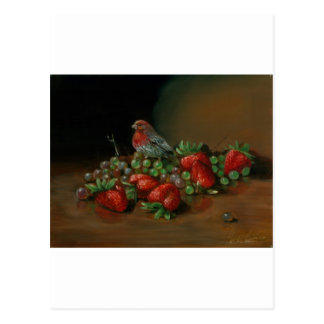 Strawberry finch bird and fruit Strawberries Postcard