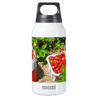 Strawberry Heaven Insulated Water Bottle