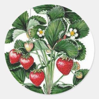 Strawberry Jam Jar Lid Label Round Sticker