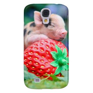 strawberry pig