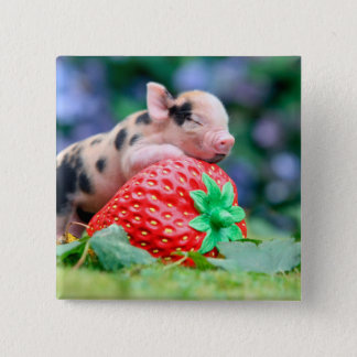 strawberry pig 2 inch square button