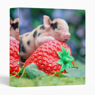 strawberry pig 3 ring binders