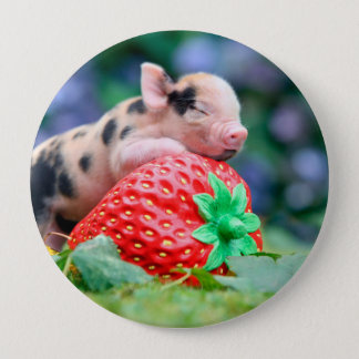 strawberry pig 4 inch round button