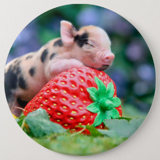 strawberry pig 6 inch round button
