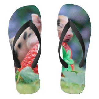 strawberry pig flip flops