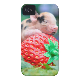 strawberry pig iPhone 4 cover