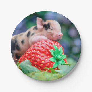 strawberry pig paper plate