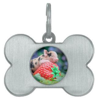 strawberry pig pet tag