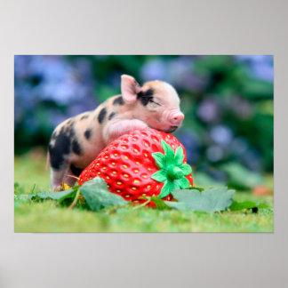 strawberry pig poster