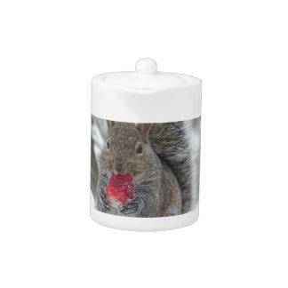 Strawberry squirrel
