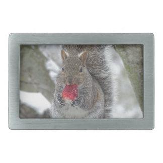 Strawberry squirrel belt buckle
