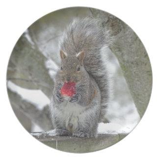Strawberry squirrel plates