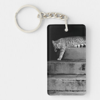 Stray Cat on Stairs Keychain