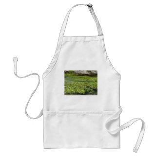 stream 2 standard apron