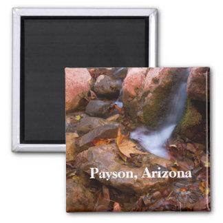 Stream in Payson,Arizona Magnet