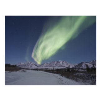 Streamers of aurora borealis fill the sky postcard
