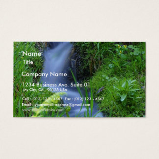 Streams Brooks Meadows Mosses Business Card